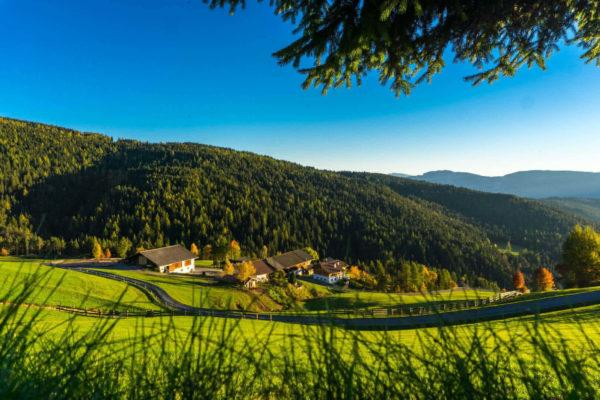 Bauernhofurlaub in Vöran